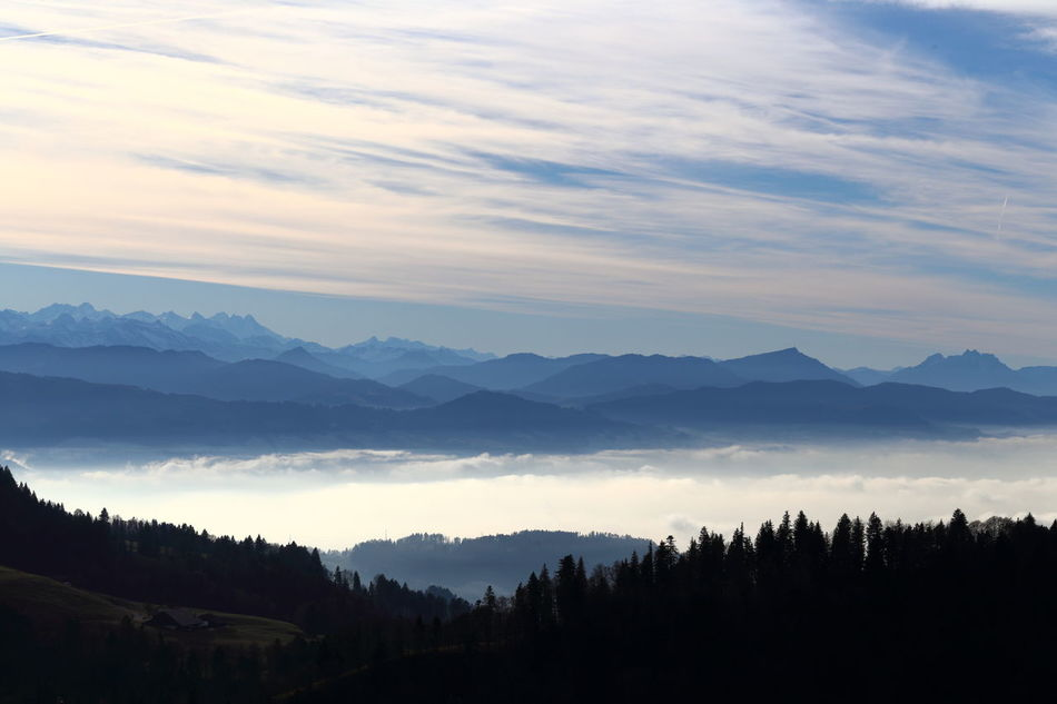 Alpine panorama, including Swiss Rigi. Alps Atmospheric Mood Beauty In Nature Blue Cirrostratus Clouds Eye4photography  EyeEm Best Shots Betterlandscapes EyeEm Nature Lover Fog Forest Inversion Landscape Looking Down Meditative Mountain Range Nature Panorama Rigi Sky Smog Switzerland Tranquility Zürcher Oberland