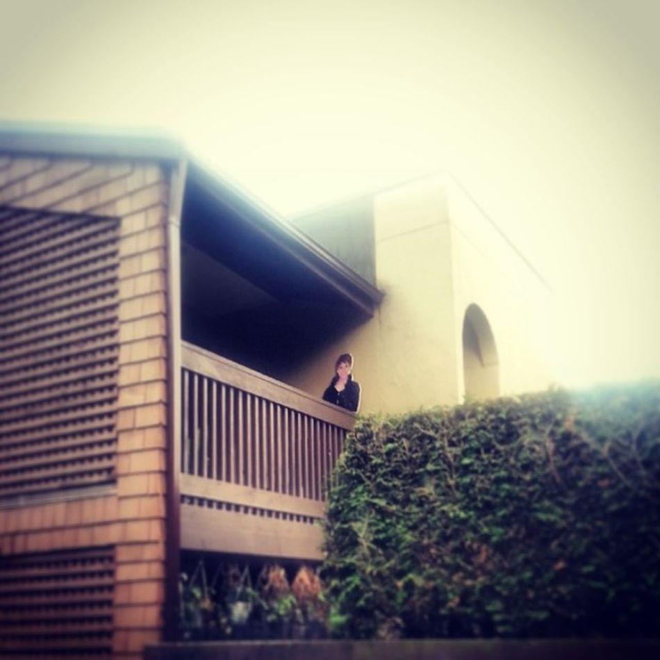 Looking dashing today, Mr Cardboard Cutout Onlyslightlycreepy Phoneography Instagram Burnaby