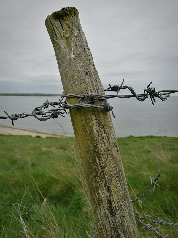 Barbed wire fence post along the coast. Barbed Wire Security Safety Protection Danger Metal Rural Scene Wooden Post No People Water Landscape Day Exclusion Outdoors Grass Metal And Wood