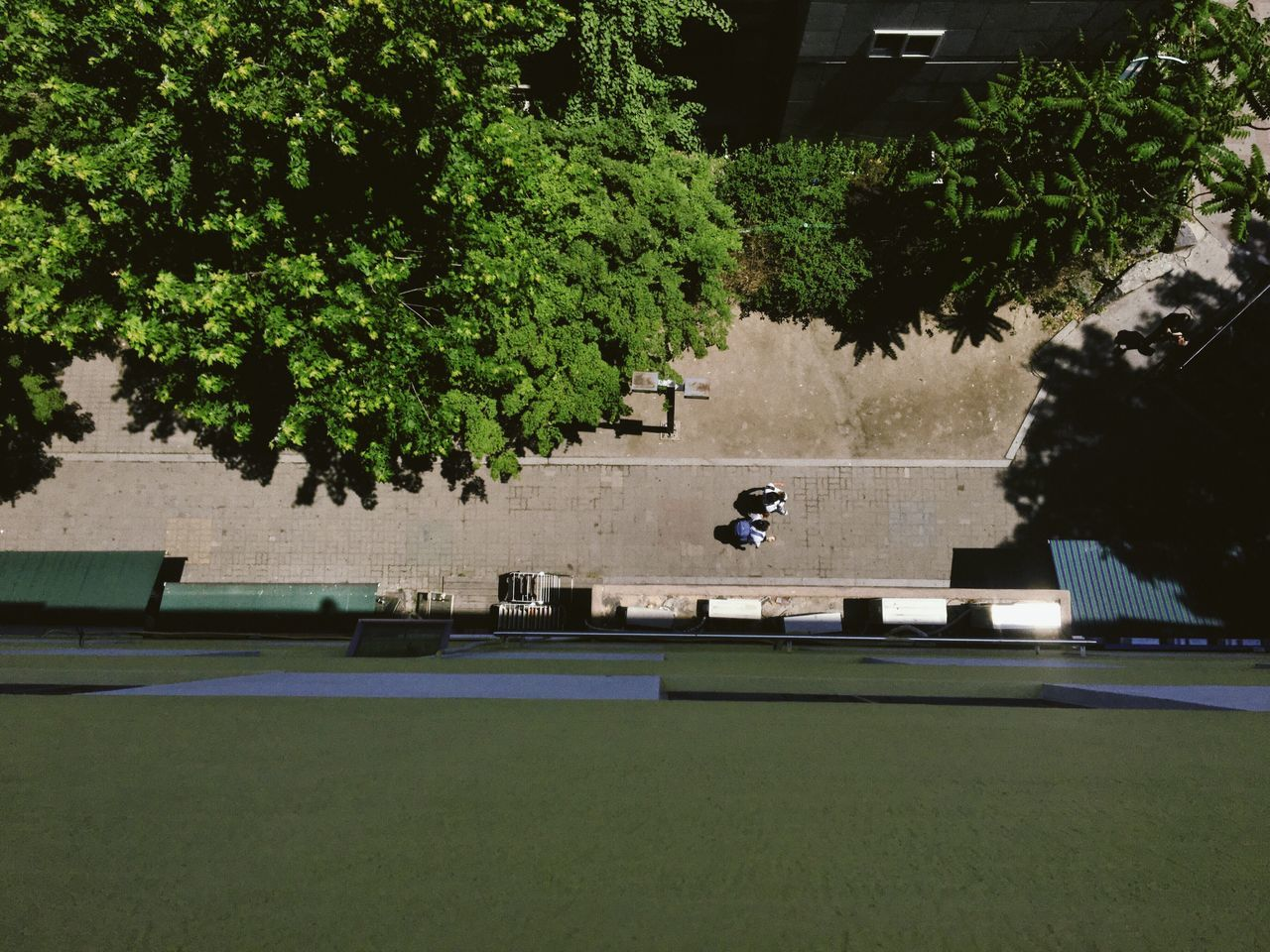 tree, growth, outdoors, sport, real people, day, architecture, nature, plant, green color, men, built structure, leisure activity, building exterior, grass, full length, one person, skateboard park, court, people