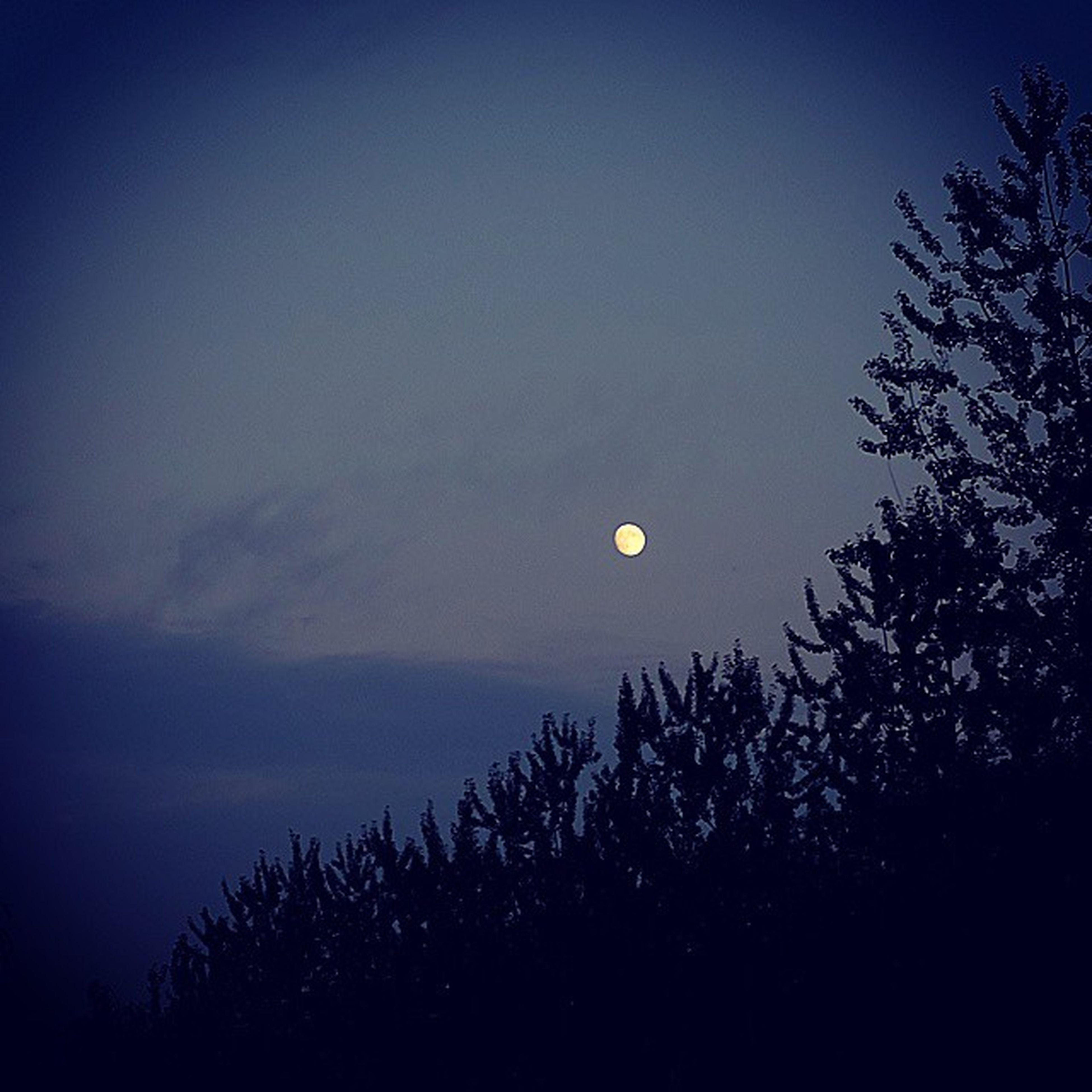 Moon 月亮 清澈 Clear fresh 清新 明月 air