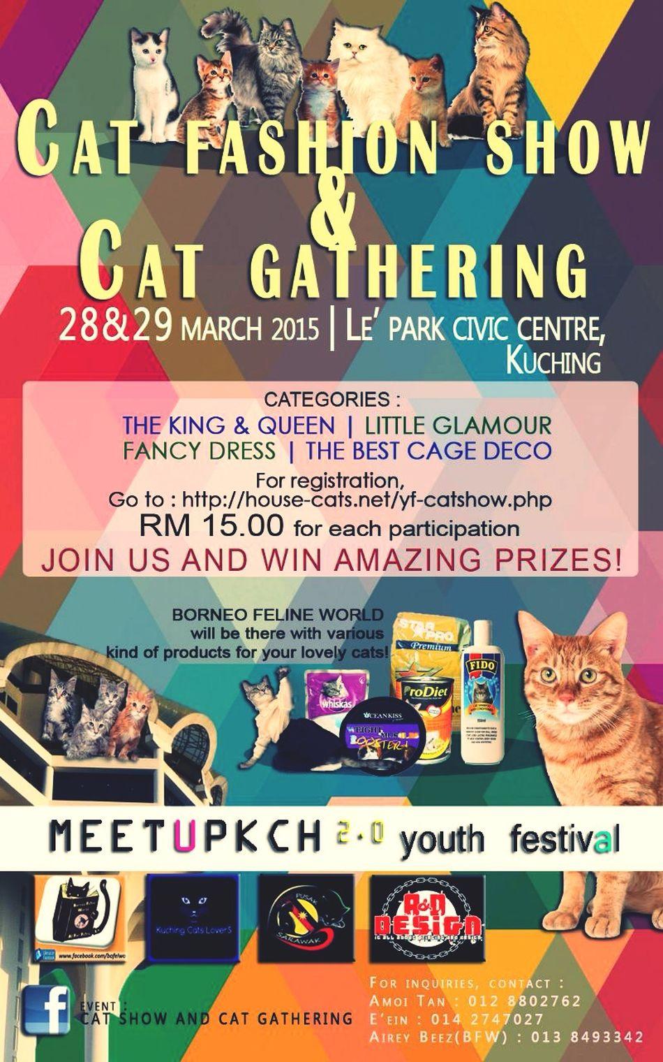 Kuchingcatslovers Cat Lovers Catlovers Kuching Cats Lovers jom guys.. Join us.,, cat show and cat gathering on 28/03/15-29/03/15 Cat Show Cat Gathering Cats Cat