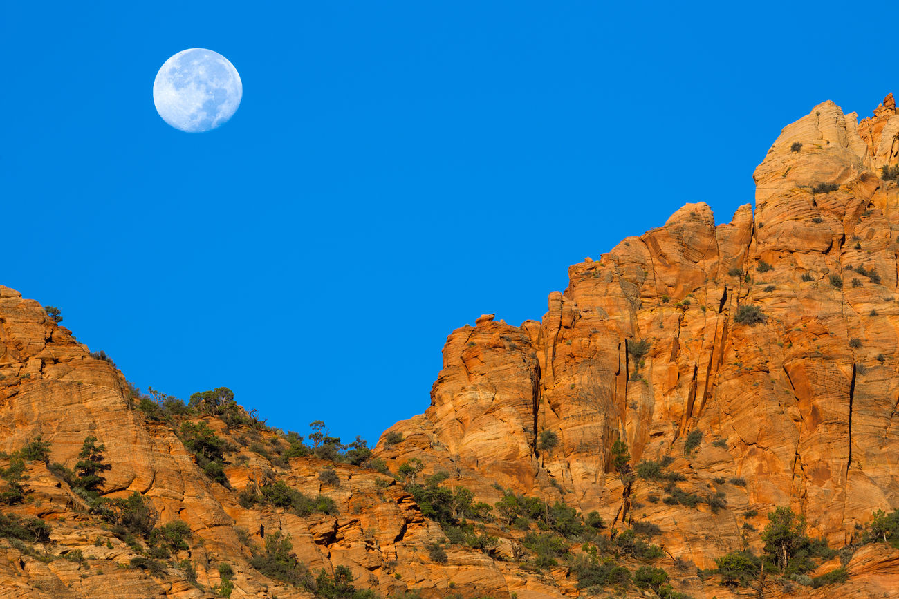 Sunrise moonset Landscape No People Scenics Clear Sky Arid Climate Beauty In Nature Mountain Day Outdoors Sky Nature Moon Rock - Object Blue Blue Sky Utah Moon Moonset Sunrise Mountains Mountainscape Sandstone Cliffs Sandstone Mountains Sandstone Rock Formation Canyons