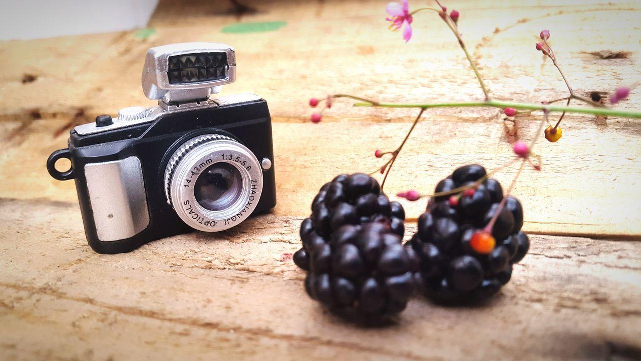 Fruits Moras Eyeem Plants Flowers,Plants & Garden Plants 🌱 EyeEm Best Shots - Flowers Little Cam