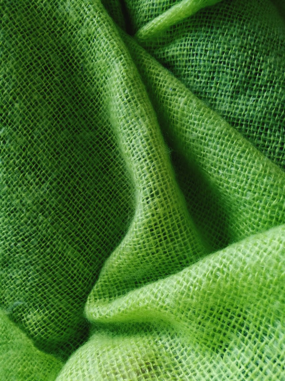 green color, full frame, backgrounds, no people, close-up, textured, pattern, indoors, day, nature, freshness
