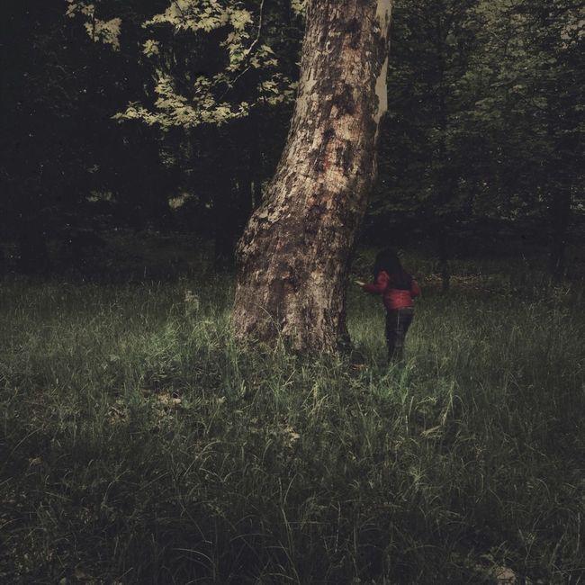 Landscape Hide And Seek AMPt_community AMPt - Shoot Or Die