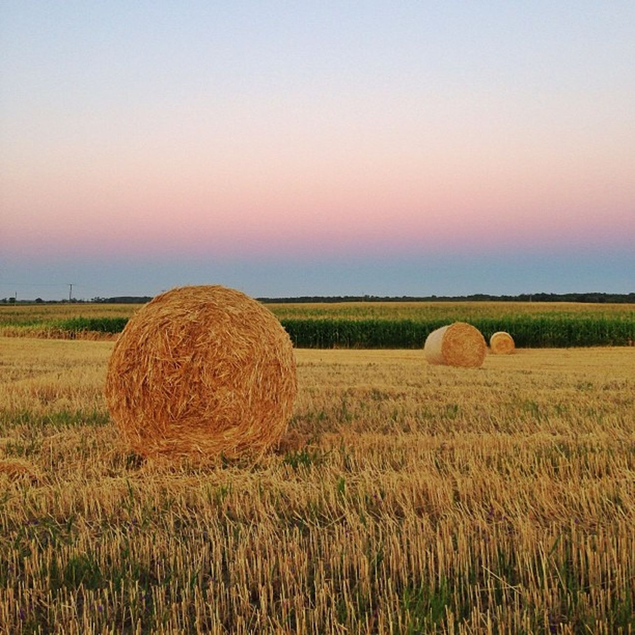 End of summer in #Hungary ☀️☀️ #hay #allshots_ #capture_today #gang_family Hungary Hay Gang_family Allshots_ O2travel Printmyfeedhappydays Capture_today Loveyoursummer Top_masters