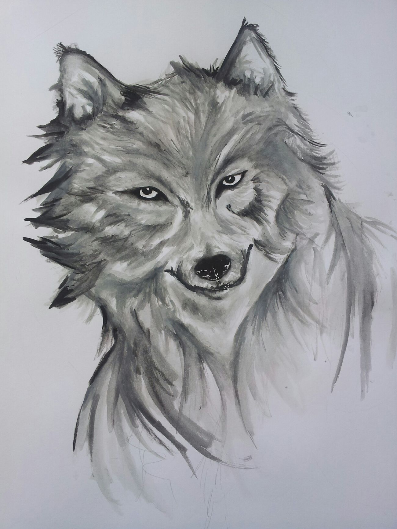 wolf.. i draw this pic with water color Myartwork ArtWork Art Artist