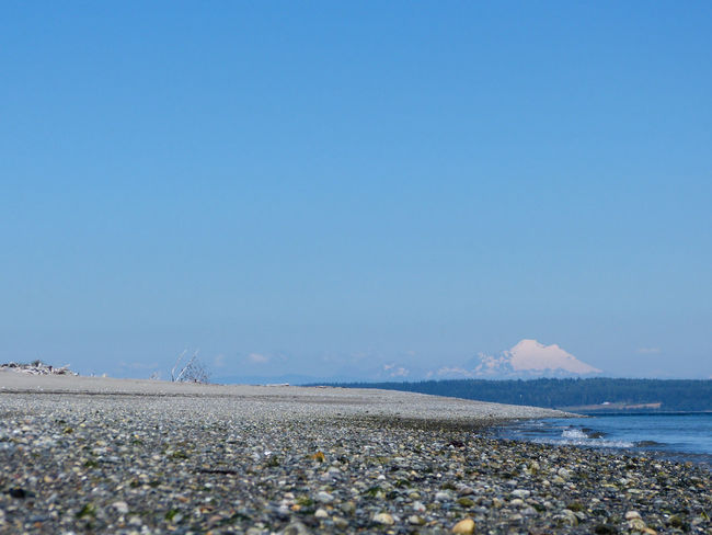 Beach Beach Photography Beachphotography Beauty In Nature Cascade Mountains Day Horizon Over Water Low Angle View Mt. Baker Pebbles And Stones Puget Sound Sea Sea And Sky Shore Water
