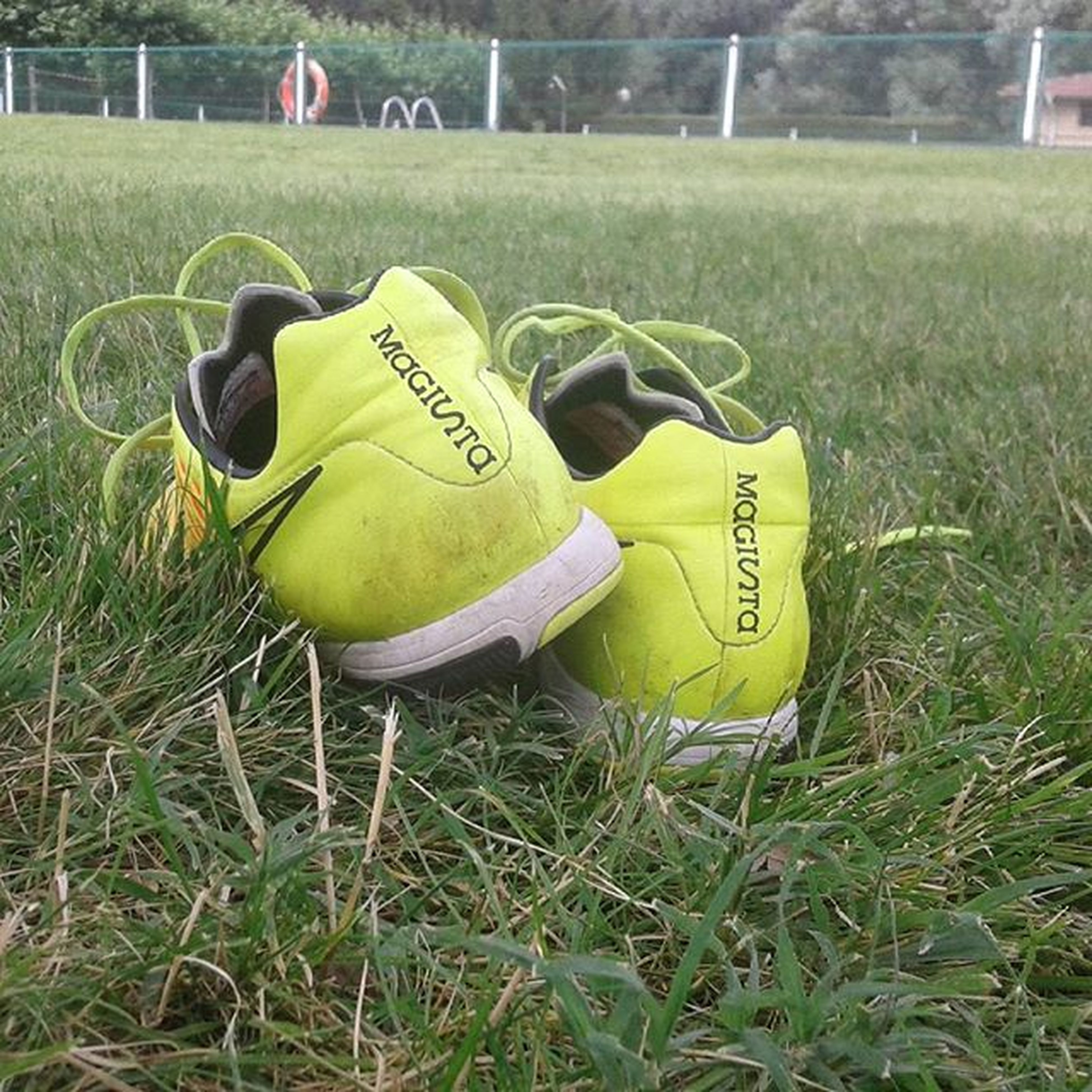 grass, field, grassy, green color, yellow, toy, day, outdoors, lawn, close-up, high angle view, childhood, relaxation, sunlight, grassland, no people, sport, shoe, text, western script