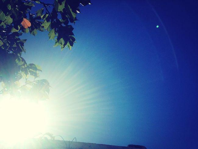 Today's Sky