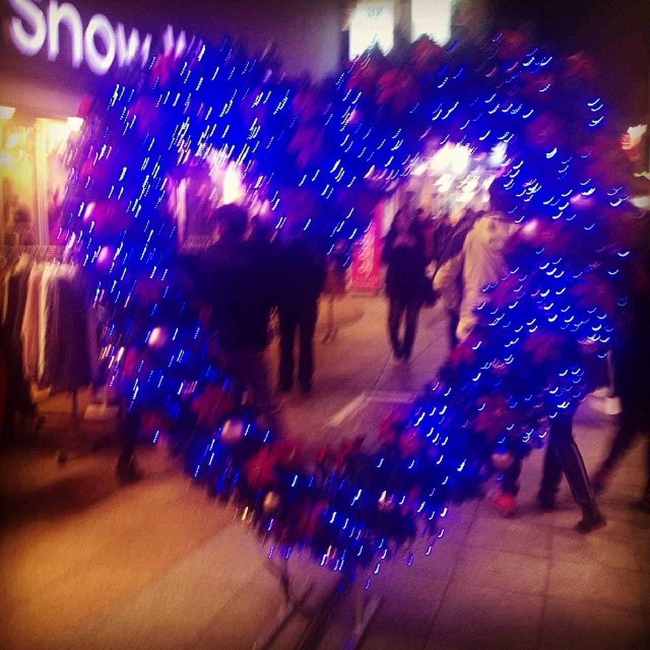 . 푸른빛♥트리. 일상 크리스마스트리축제 크리스마스트리