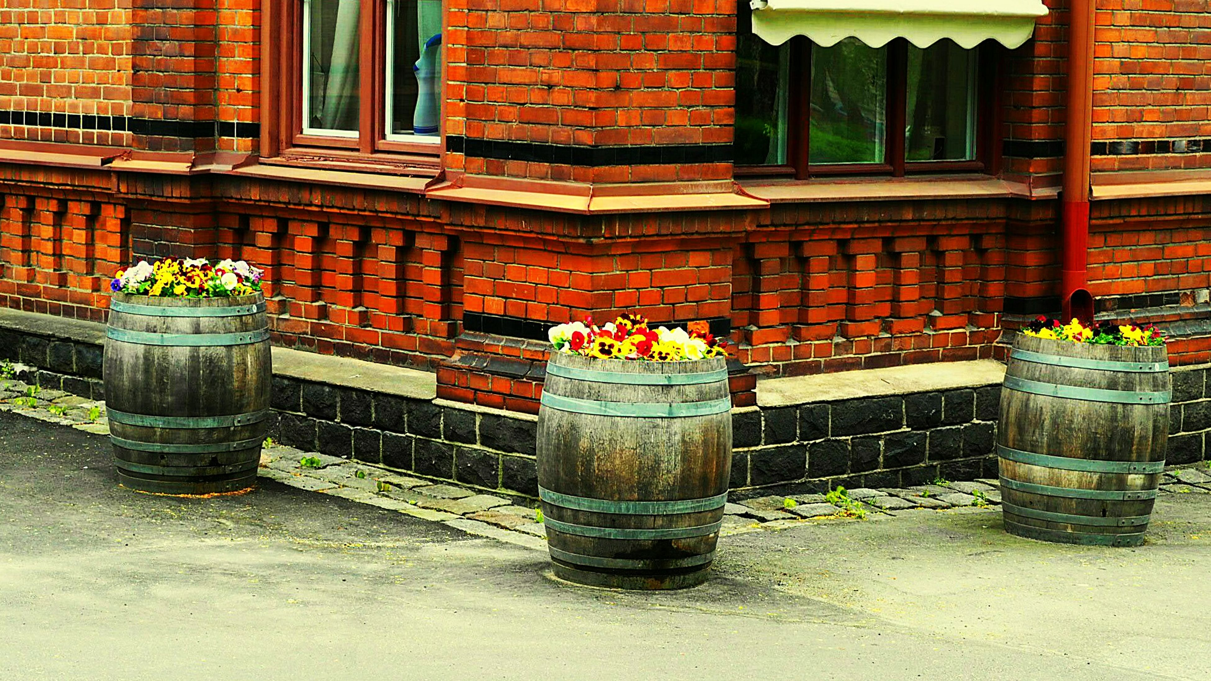 building exterior, architecture, built structure, brick wall, window, house, potted plant, plant, outdoors, old, day, wall - building feature, flower pot, outside, residential structure, no people, front or back yard, residential building, building, growth