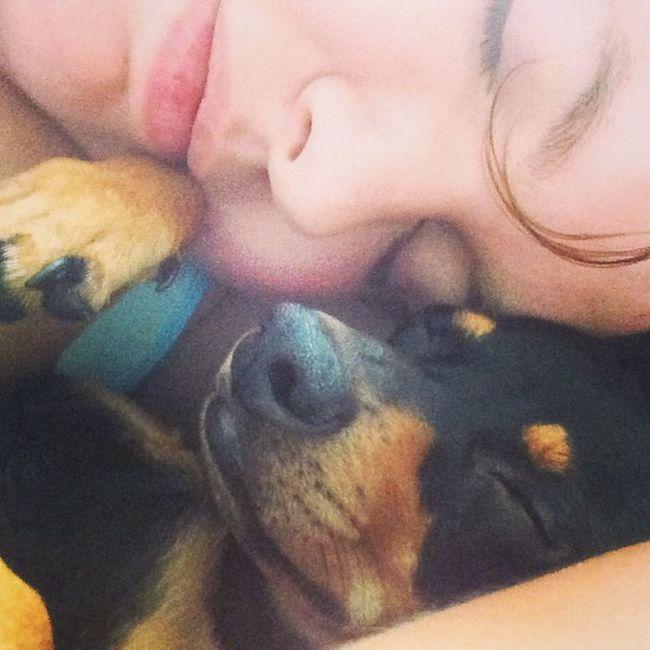 Mommynbaby Squishy Saturday Sleepeez sleeping sleepinbydaddy eliasnkatlynn hunter minpin chihuahua terriermix