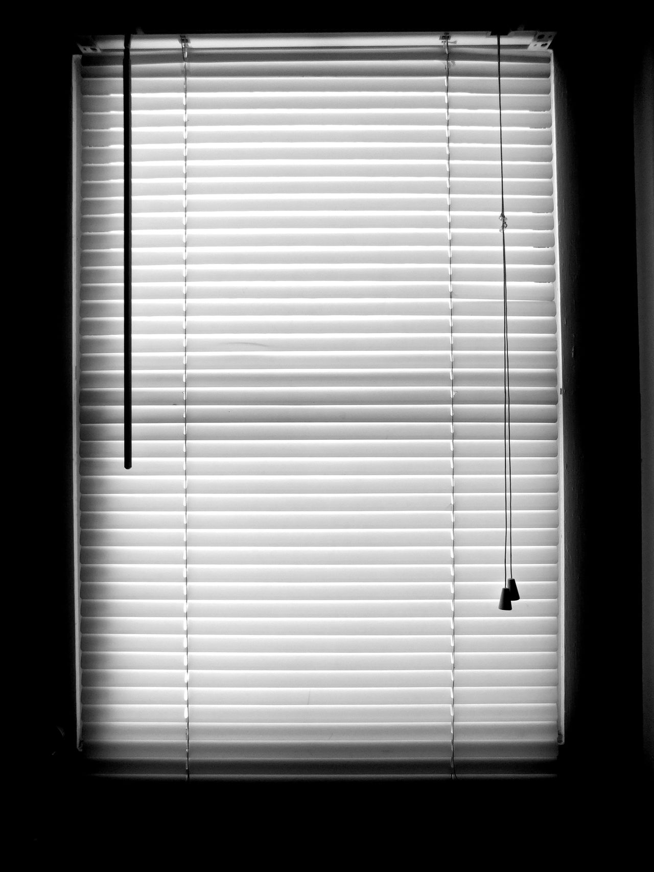 Monochrome Photography Window Blackandwhite Darkness And Light Light And Shadow Texture Pattern Pieces Blinds Lines Random Acts Of Photography Notes From The Underground Textures And Surfaces Full Frame Indoors  Shapes , Lines , Forms & Composition Lines And Angles EyeEm Best Shots - Black + White Close-up Lines And Shapes Shadow And Light EyeEm Nikon Floridaphotographer In A Row Maximum Closeness
