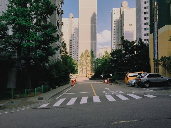 Tree Architecture Car Transportation Building Exterior City Built Structure Road Road Marking Mode Of Transport Land Vehicle Street Zebra Crossing Tall - High Skyscraper City Life Travel Destinations Outdoors Tall Office Building