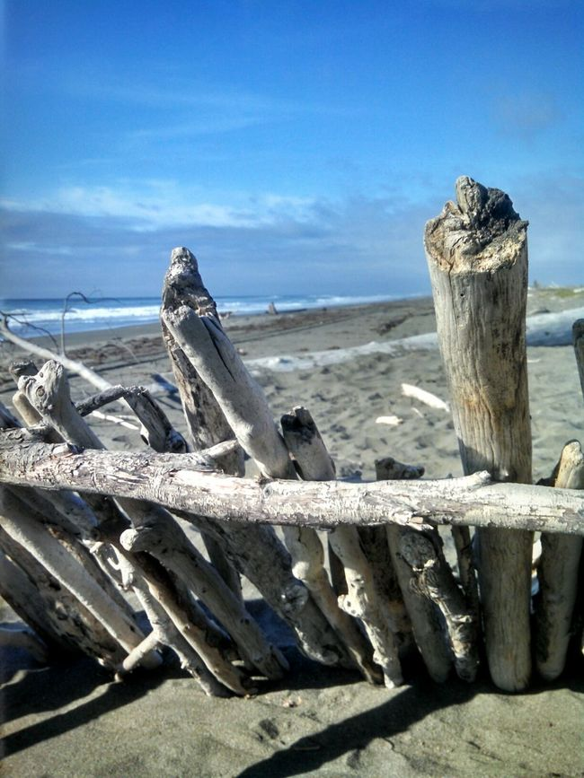 Driftwood Fort Wind Breaker Looking Out To Sea. Beachphotography StillLifePhotography Pacific Ocean California Humboldt County EyeEmBestPics Landscape Enjoying Life EyeEm Stilllife EyeEm Best Shots Capture The Moment From My Point Of View Smartphonephotography Mobile Photography Eye4photography  Eeyem Photography No People EyeEm Gallery EyeEm Nature Lover Lobuephotos Wonderland
