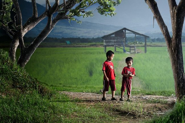 Siblings Village Photography Humaninterestphotography Loves_indonesia_humaninterest Village Life Paddy Field Landscape_photography