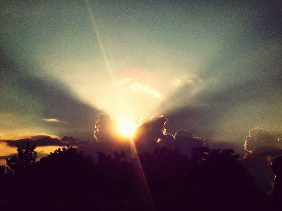Sunset Silhouettes Beautiful Sunset EyeEm Nature Lover Summer