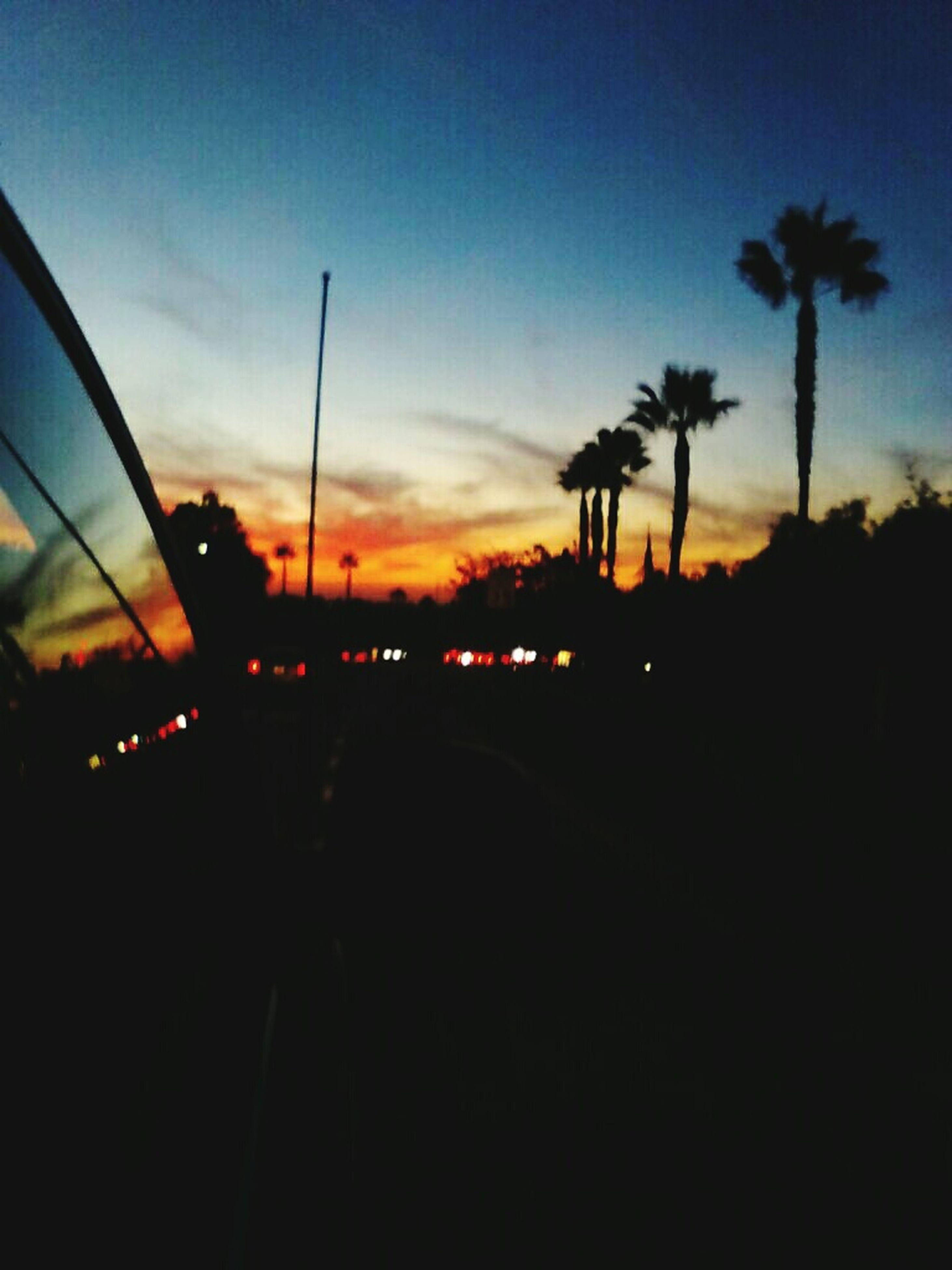 sunset, silhouette, sky, tree, transportation, palm tree, orange color, dark, dusk, cloud - sky, street light, car, illuminated, land vehicle, nature, scenics, road, cloud, tranquility, outdoors