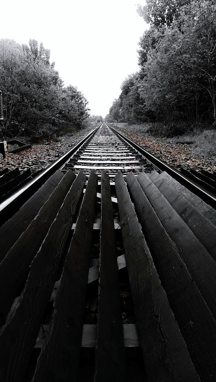railroad track, rail transportation, transportation, diminishing perspective, the way forward, day, railroad tie, tree, no people, straight, outdoors, clear sky, nature, sky