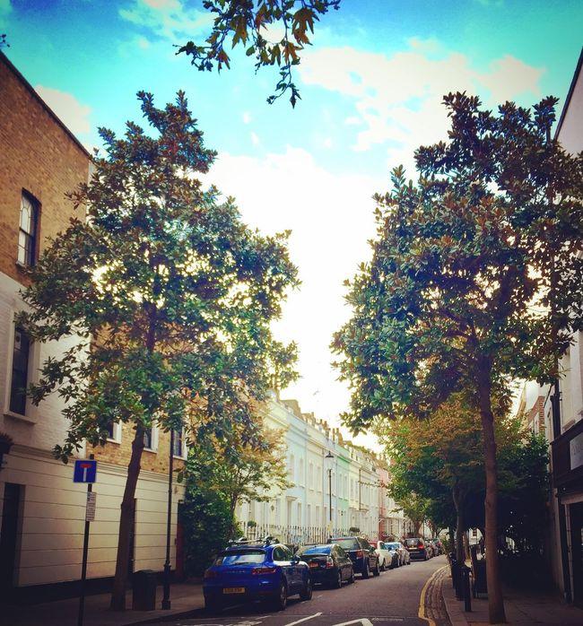 Architecture London Chelsea House Autumn