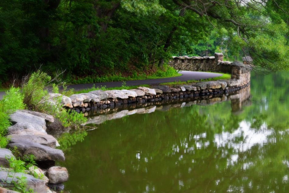 Around the Bend Nature Water Water Reflections Path Greenwich, CT Nikond3300 Nikon Nikonphotography