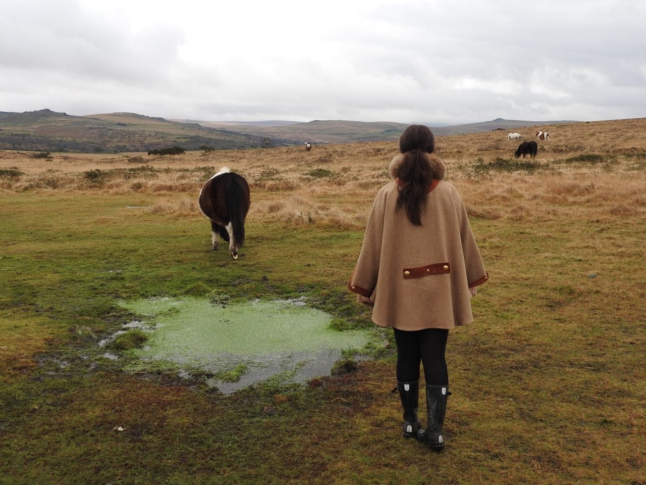 Cape  Dartmoor Dartmoor Ponies Girl Hills Hollandcooper Pond Pony View Wellies