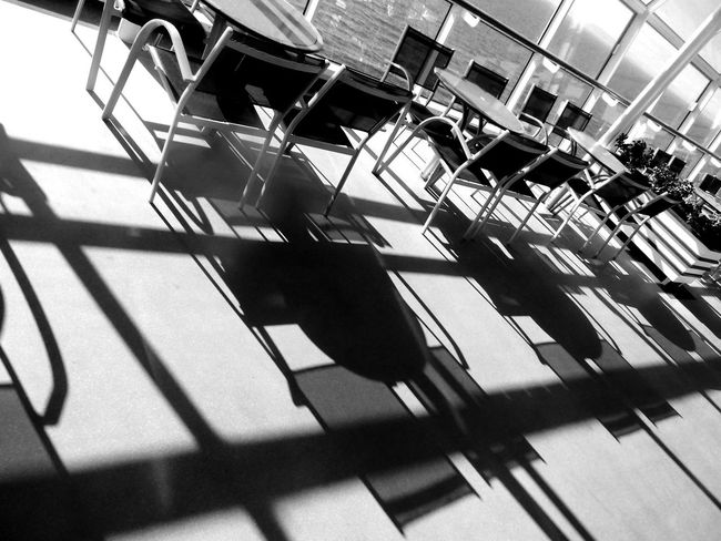 Streamzoofamily Adventure Of The Seas B&W Collection Shadows