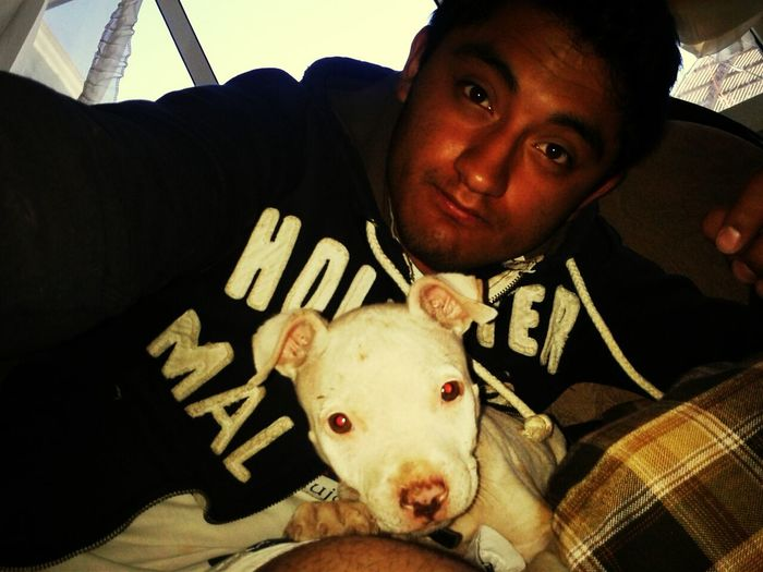 Panchito and me! Pitbull My Pitbull Dog Pictures Dogoftheday