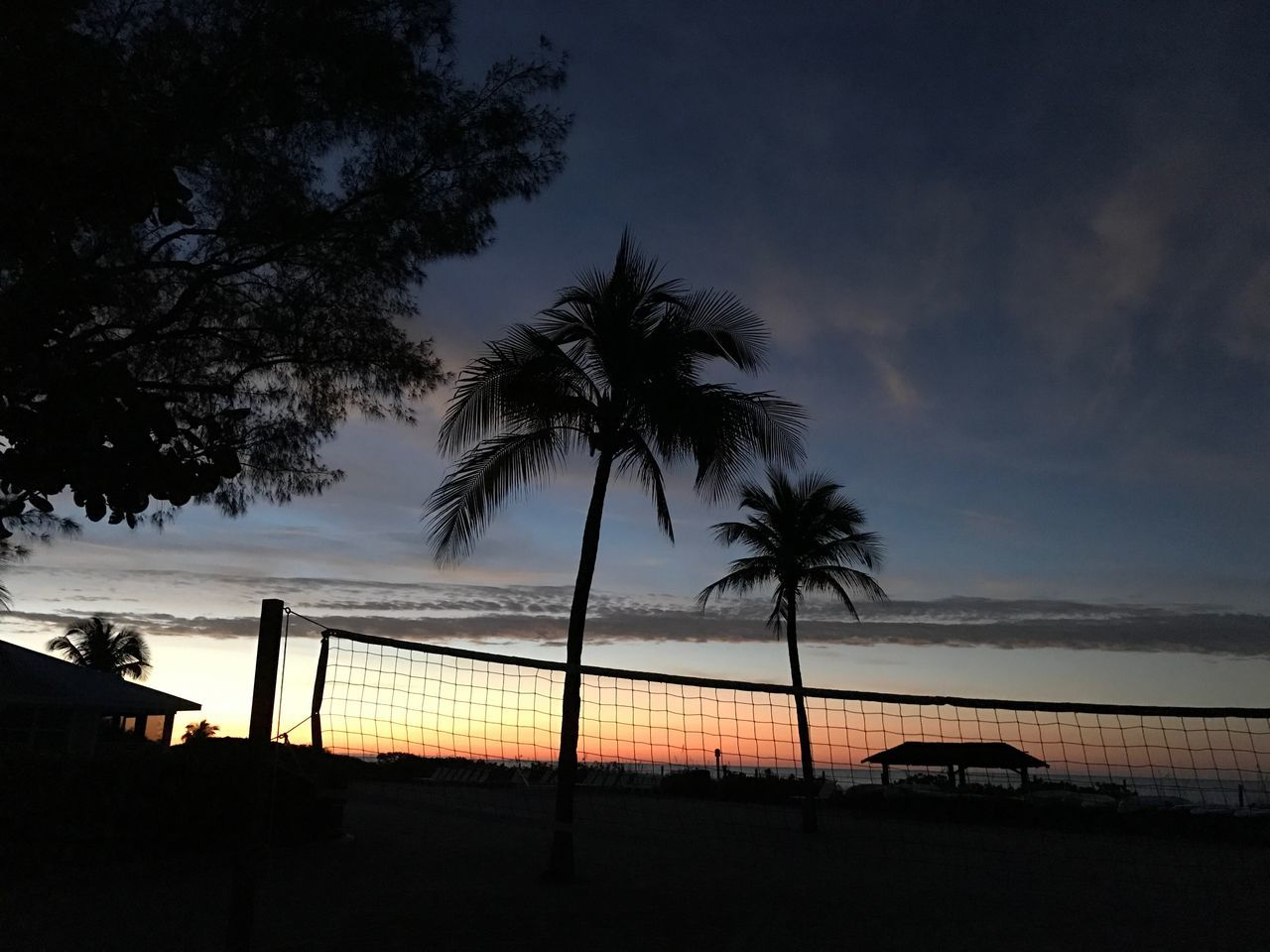 Palm Tree Tree Sky Beauty In Nature Sea Beach Scenics Nature Water Cloud - Sky Tranquility Silhouette Sunset Tranquil Scene Outdoors No People Tree Trunk Horizon Over Water Day Beach Volleyball