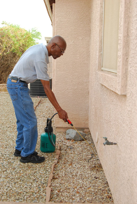 Male senior citizen using a do-it-yourself insect extermination kit to spray the side of his house in the backyard. African American Man Architecture Arizona Backyard Black Blue Built Structure Casual Clothing Day DIY At Home Exterminating Exterminator At Work Full Length Home Lifestyles Male Mesa Arizona Outdoors Pest Control Senior Citizen  Spraying Sunny Yard