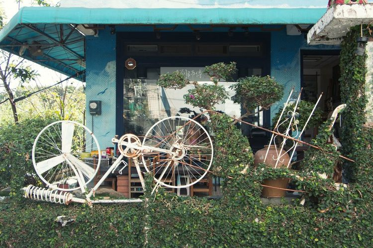 Mode Of Transport No People Outdoors Bicycle Transportation Day Wheel Land Vehicle Plant Tree Grass