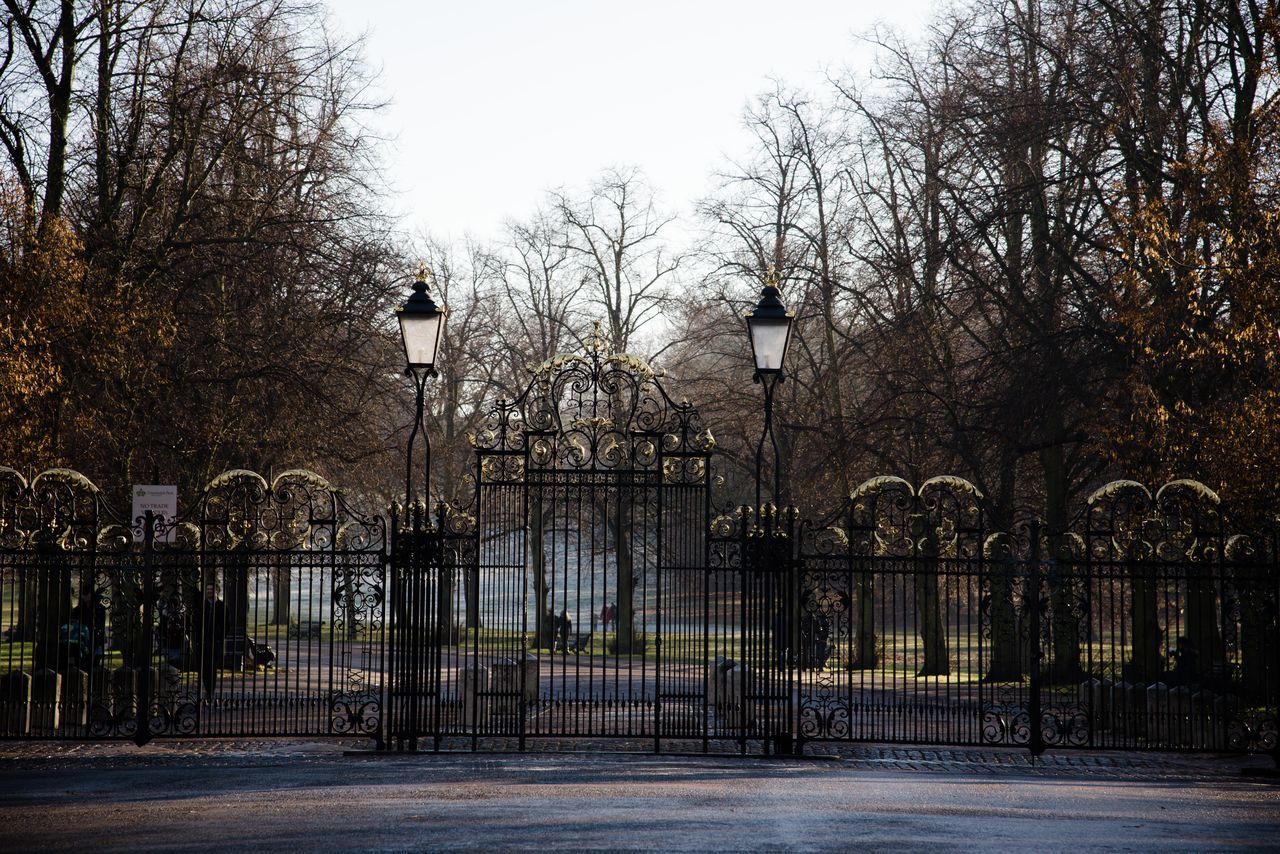 Greenwich Park Arhitecture Empty Fence Gate Greenwich Greenwich Park Light And Shadow London Parks Mist Misty Morning Streets