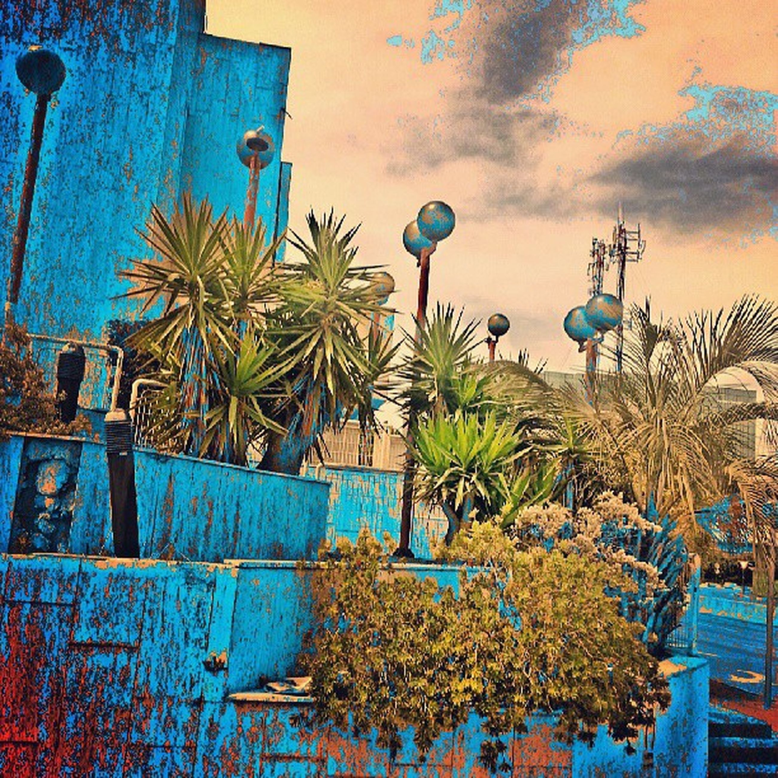 building exterior, built structure, architecture, sky, palm tree, blue, multi colored, cloud - sky, tree, low angle view, house, plant, growth, nature, outdoors, no people, sea, cloud, wall - building feature, day