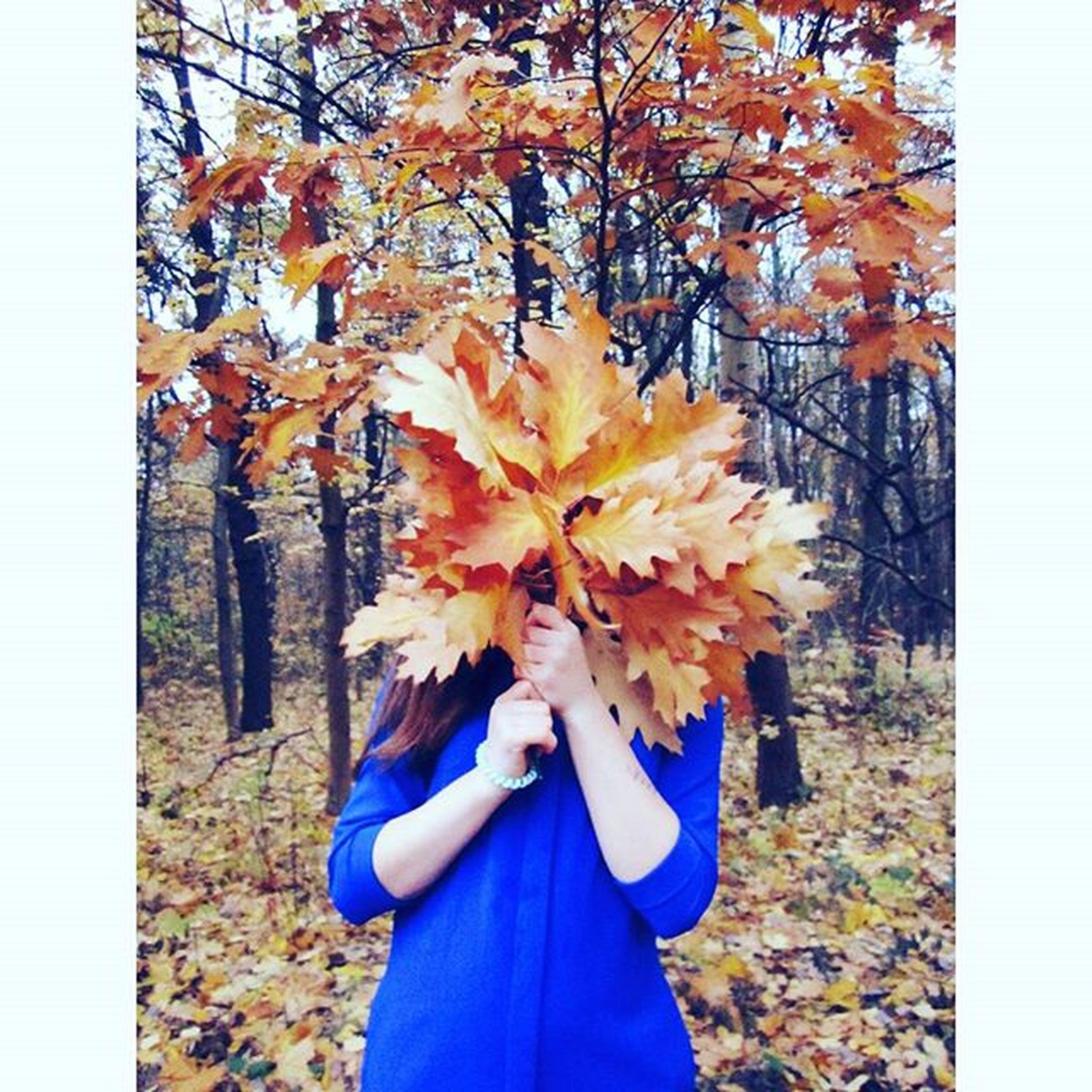Fall Autumn 🍂 Autumnleaves Autumnweather Autumncolors Autumn2015🍂🍃 Follow Followme Follow4follow ! Like