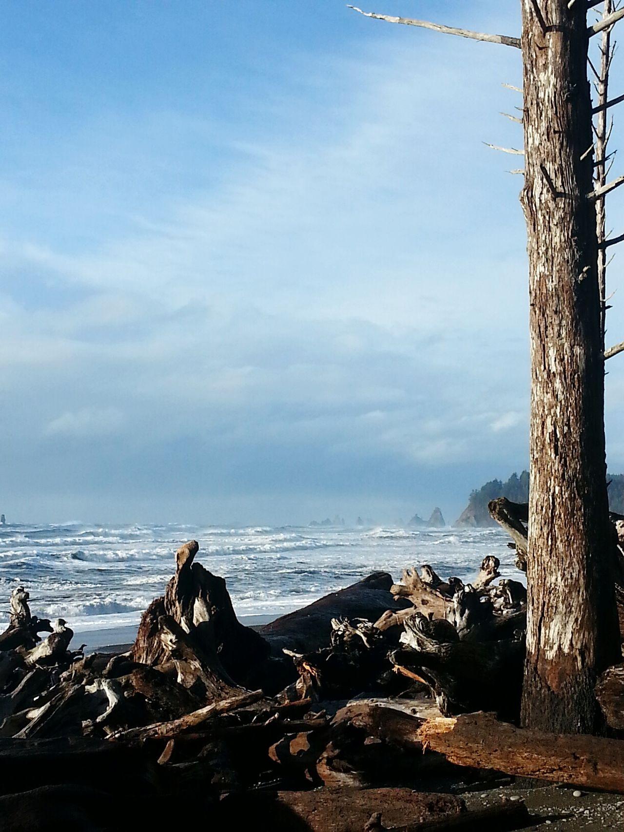 Rialto Beach Oceanside Betterlandscapes Washington Coast Stormy Beach Pacific Ocean Beauty In Nature Sky Driftwood