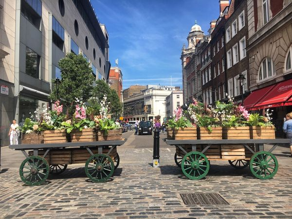 Covent Garden  Flowers Cobbles Cobbled Streets London Black Cab Sky Spring Sunshine May Lunchtime