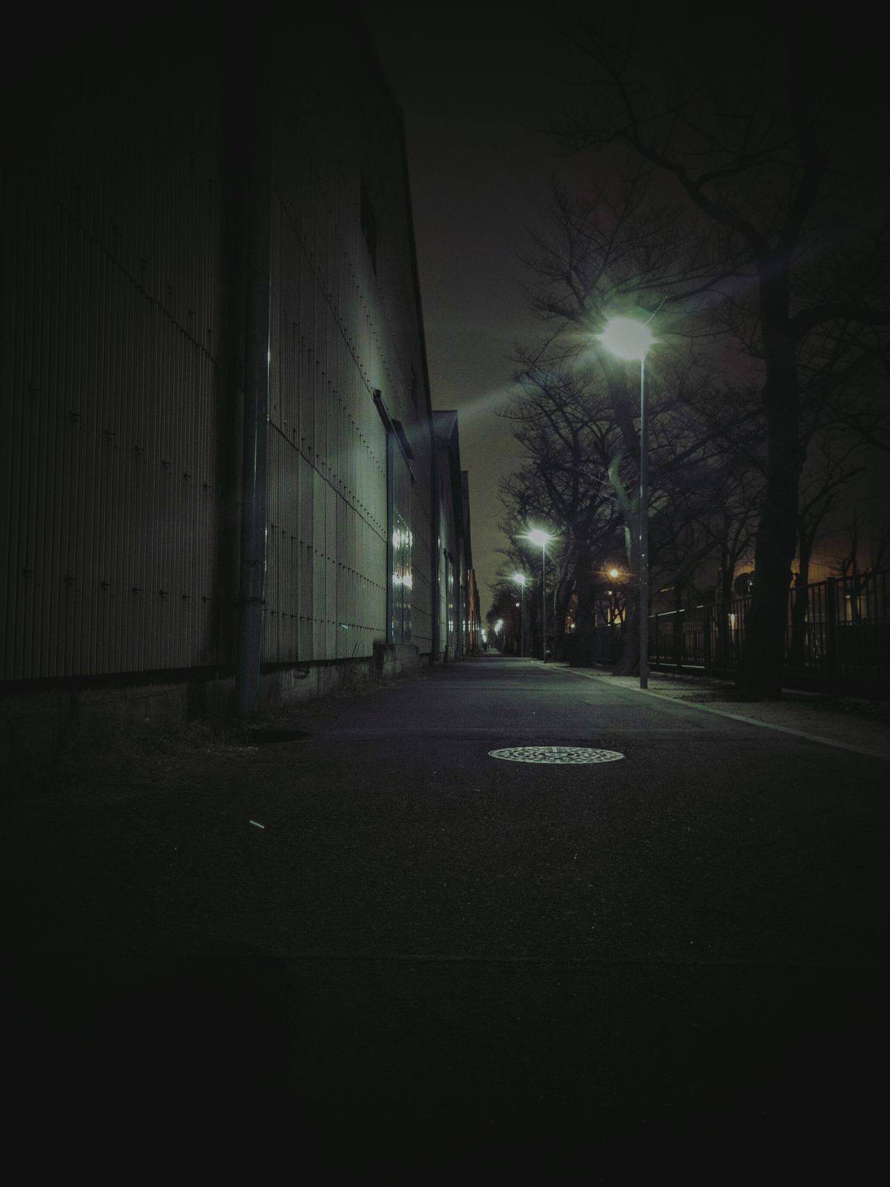 Warehouse Street Night Jog Night Photography Light And Shadow Night View Tree_collection  Scenery Toniht