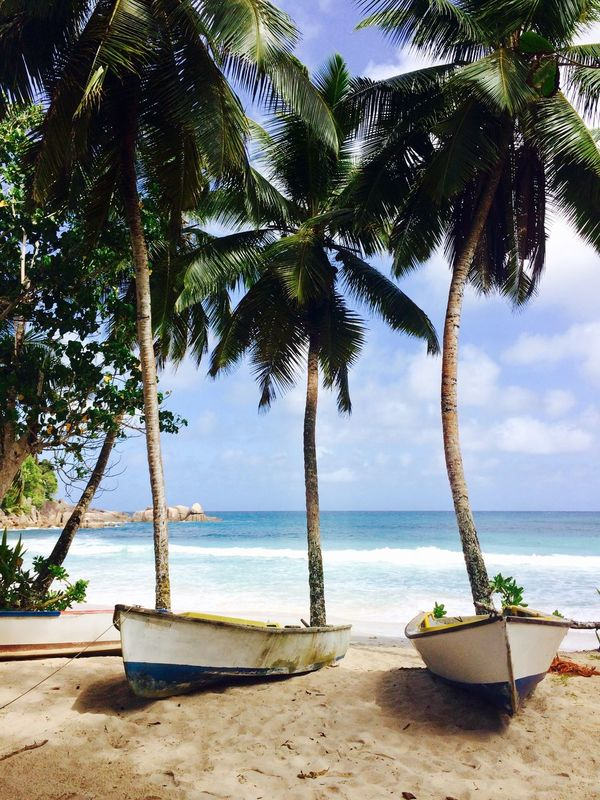Seychelles Mahé Boats Palm Trees Shore Sea Sky Showcase July Lost In The Landscape Perspectives On Nature