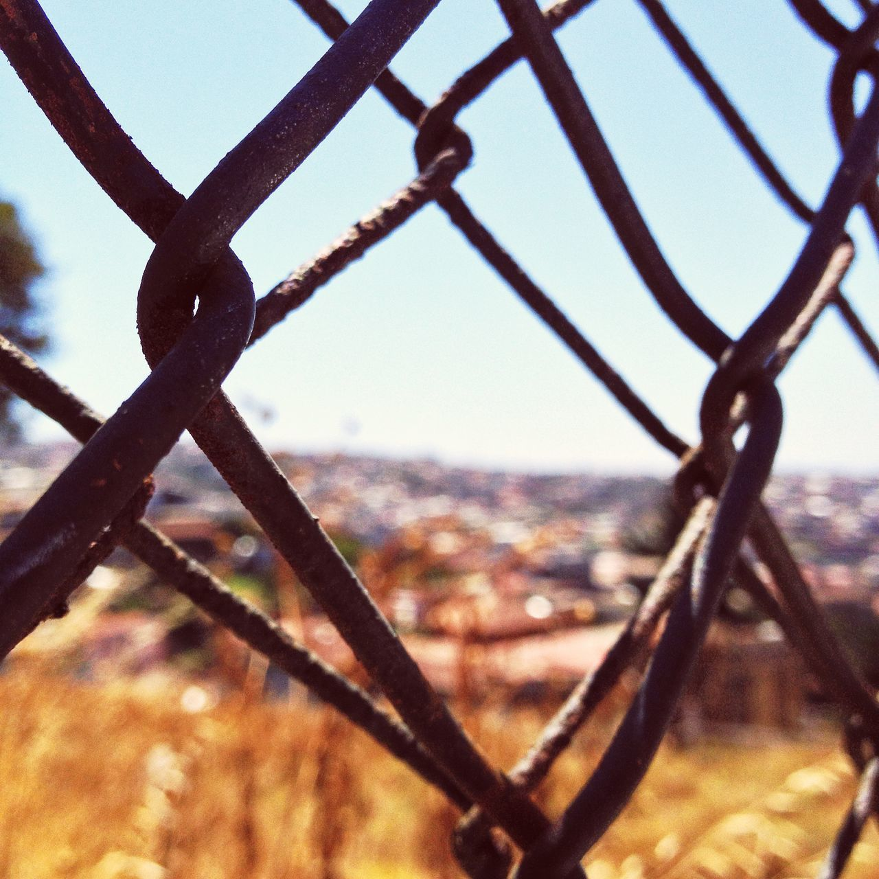 Through the Valparaiso Fence Adapted To The City Barrier Close-up Day Fence Focus On Foreground Metal Nature No People Outdoors Protection Safety Security Sky