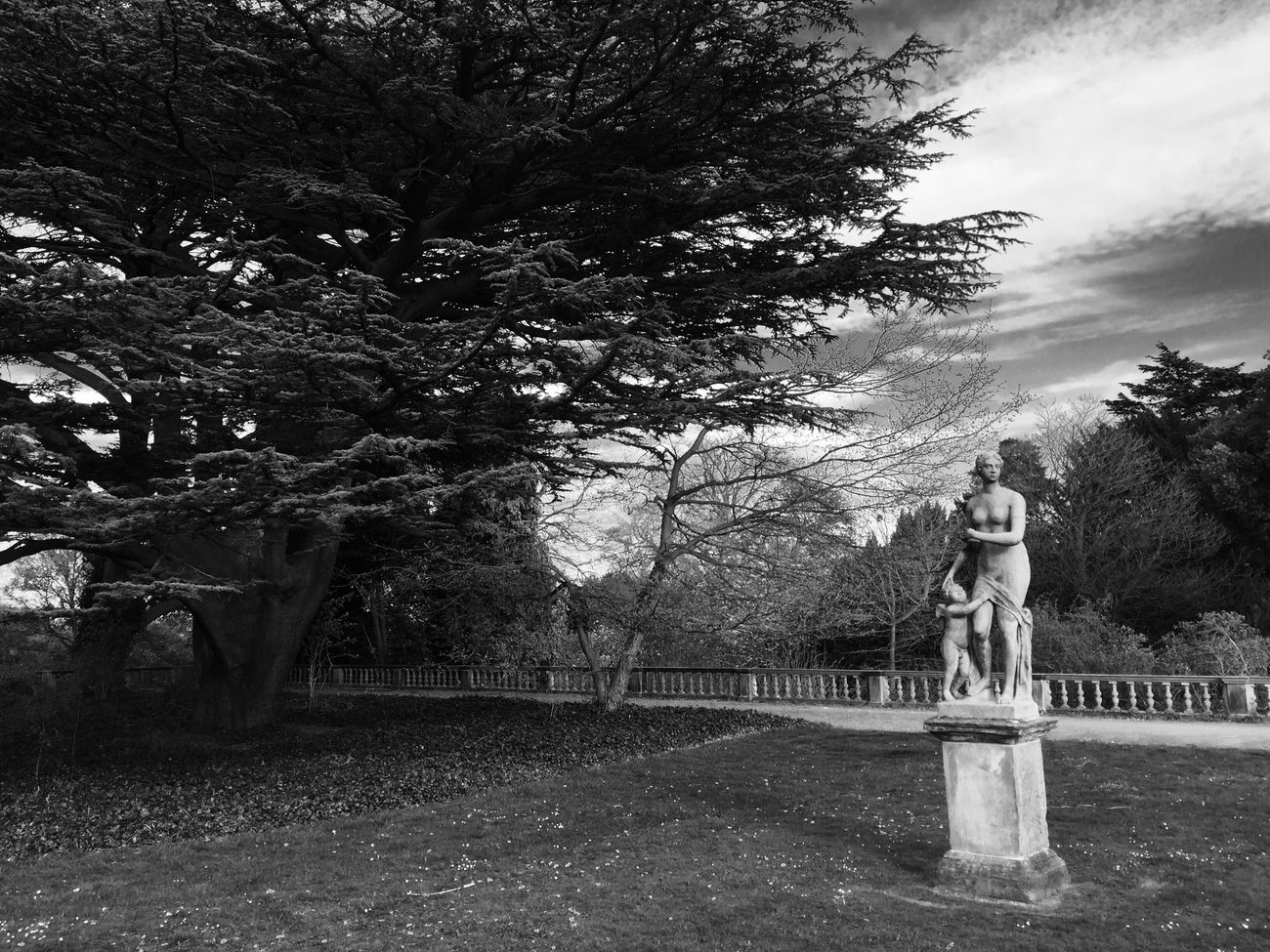 Wollaton Hall Garden Photography Landscape Sculpture Outdoors Tree Black And White Blackandwhite Photography ArtWork