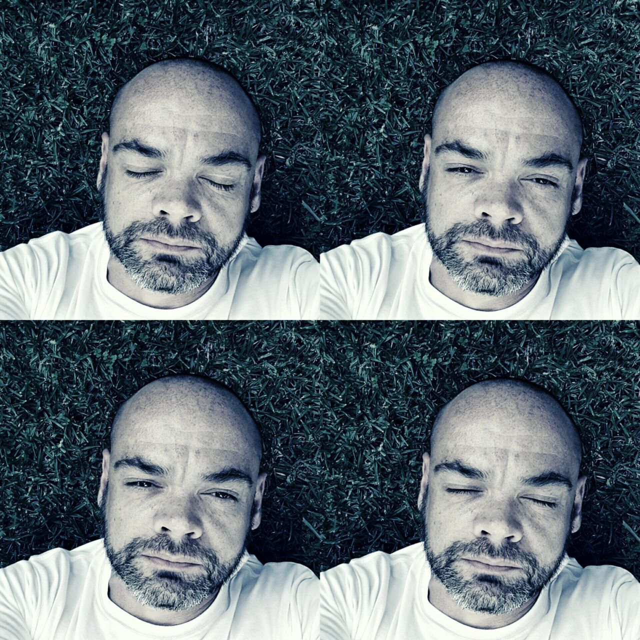 shaved head, completely bald, lying down, humor, eyes closed, men, multiple image, adult, beard, group of people, adults only, only men, human face, portrait, human body part, headshot, fun, screaming, people, conflict, making a face, young adult, close-up, outdoors, day