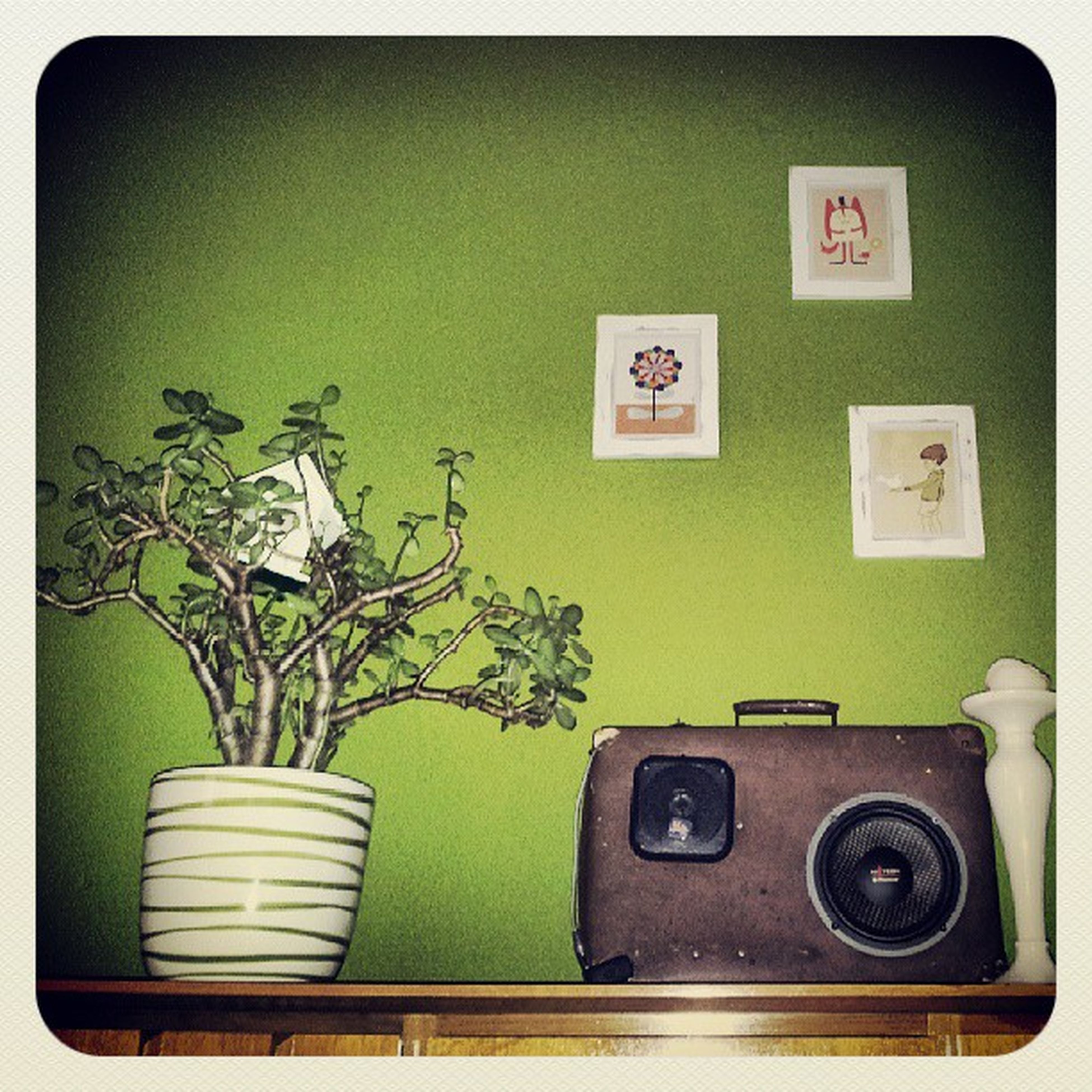 transfer print, indoors, auto post production filter, table, chair, potted plant, wall - building feature, home interior, absence, green color, wall, plant, flower, no people, technology, still life, growth, retro styled, house, sofa