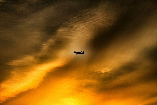 43 Golden Moments「黄昏ジェット機」 Twilight Airplane Sunset Silhouettes Sunset_collection Sunset Sky And Clouds Clouds And Sky Airplane Airplane Silhouette シルエット部 EyeEm Best Shots EyeEm Gallery EyeEm Best Edits EyeEm Best Shots - Sunsets + Sunrise 飛行機のある風景 飛行機 Taking Photos Taking Pictures EyeEmBestPics EyeEm The Best Shots Silhouette And Sky Silhouettes Silhouettes Of Sunset Silhouette Silhouette_collection