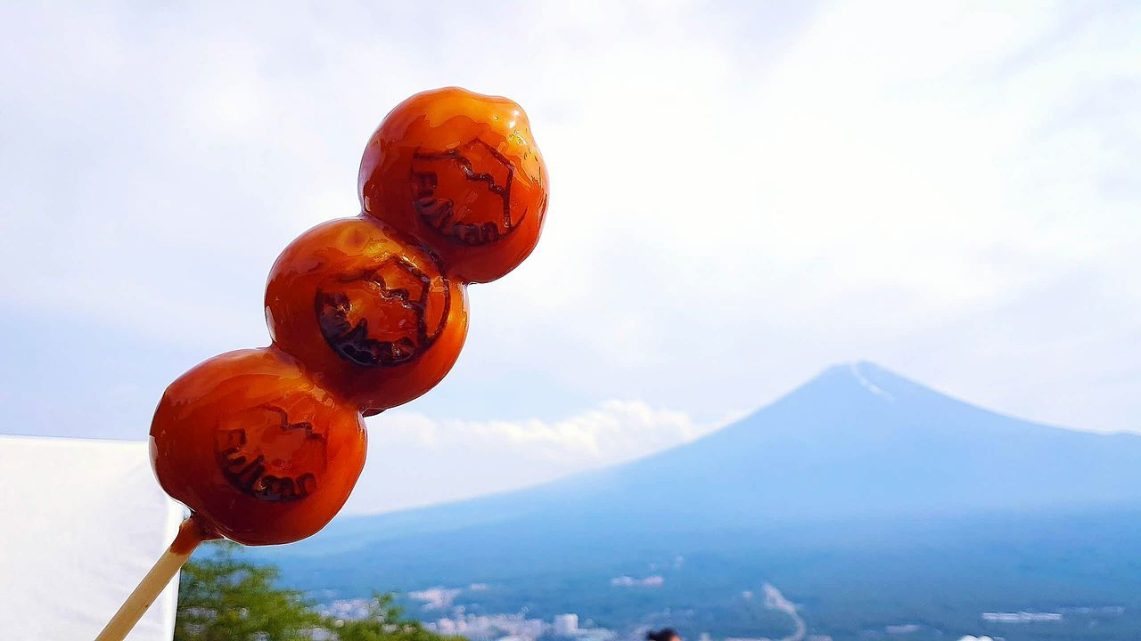 Close-Up Of Pumpkin On Mountain Against Sky