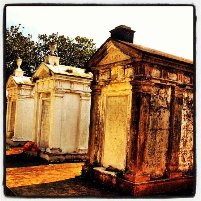 Rice. #rise #marble #mausoleum #nola #neworleans #cemetery #saveourcemeteries #lafayettestreetcemetery #bw #blackandwhite #three #crypt #tomb #tombstone NOLA Tomb Rise Neworleans Saveourcemeteries Lafayettestreetcemetery Blackandwhite Three Cemetery Bw Mausoleum Tombstone Marble Crypt