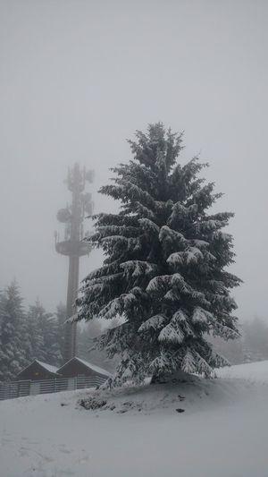 Turm Schnee