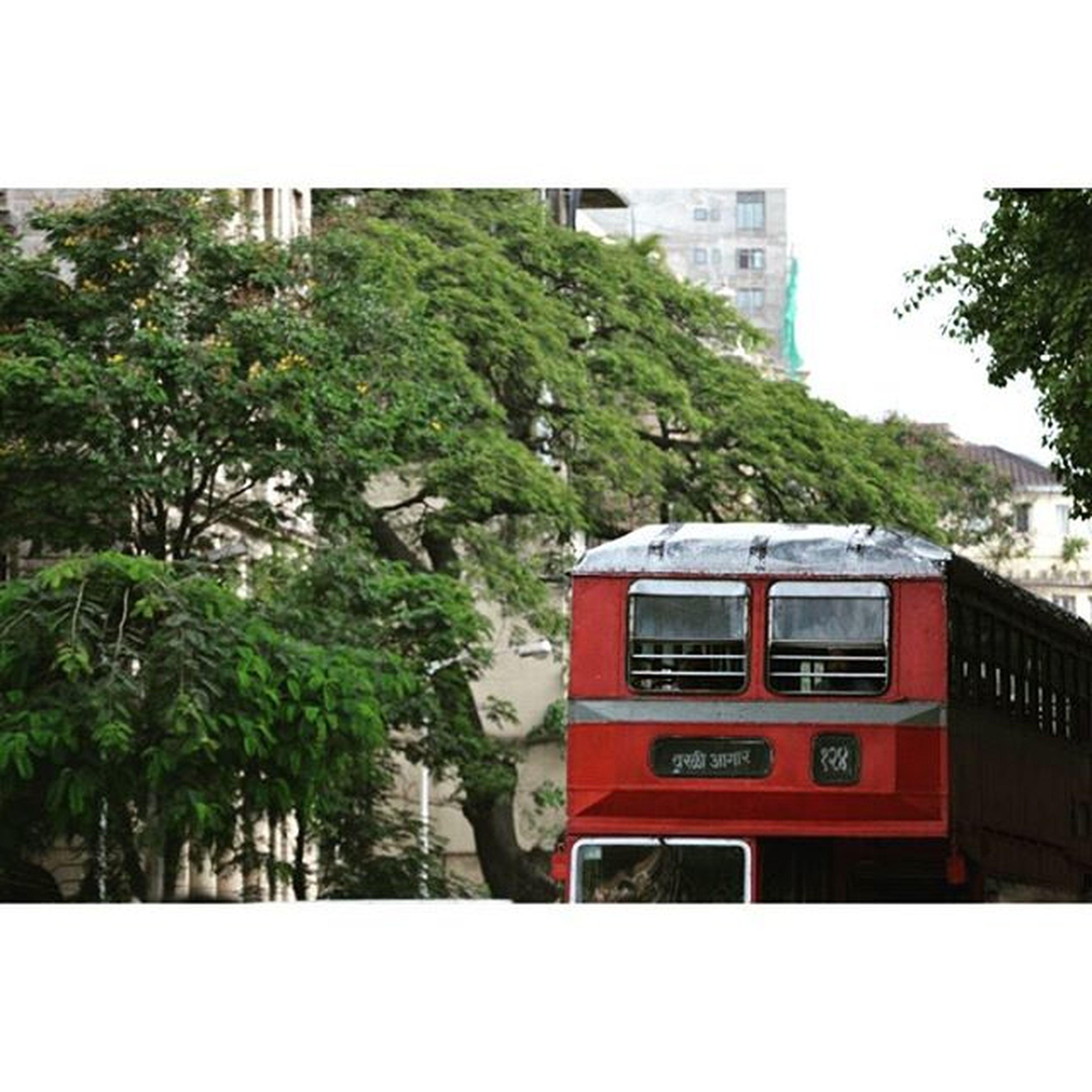 The Streets of Mumbai Vscocam VSCO Vscomumbai Vscogood Travel Igersoftheday Ig_captures Streetphotography MumbaiDiaries Street Doubledeckar Travelgrams Photodaily Instagood Instadaily Picoftheday Capture Moment Minimil