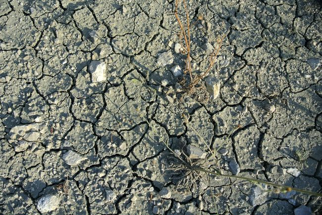 Earth Crack Terre